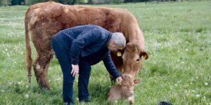 Bezpieczeństwo w rolnictwie